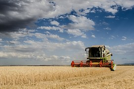 harvest-1408450__180